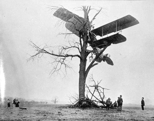 Curtiss JN-4 Jenny in a tree